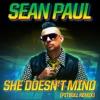 She Doesnt Mind Pitbull Remix Single