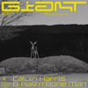 Calvin Harris, Rag'n'Bone Man - Giant artwork
