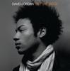 David Jordan - Sun Goes Down artwork