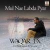 Mul Nae Labda Pyar feat Bilal Saeed Shortie Single