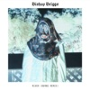 River (BURNS Remix) - Single - Bishop Briggs