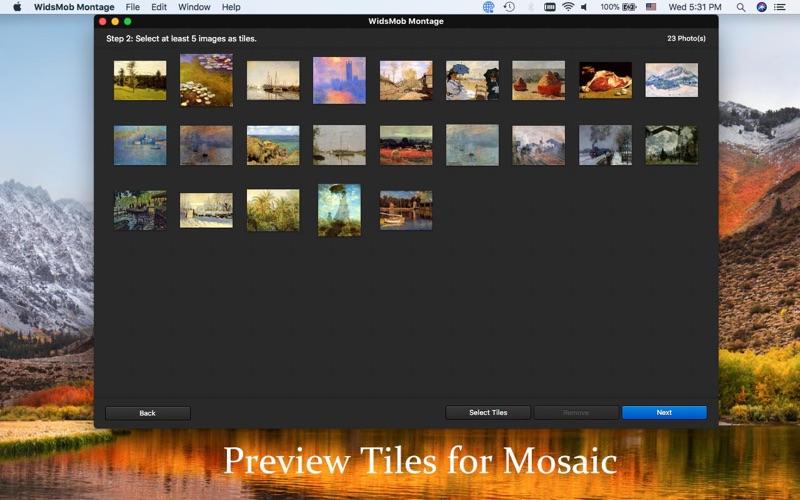 1_WidsMob_Montage-Photo_Mosaic.jpg