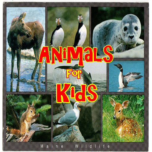 Animals for Kids Trivia - FREE