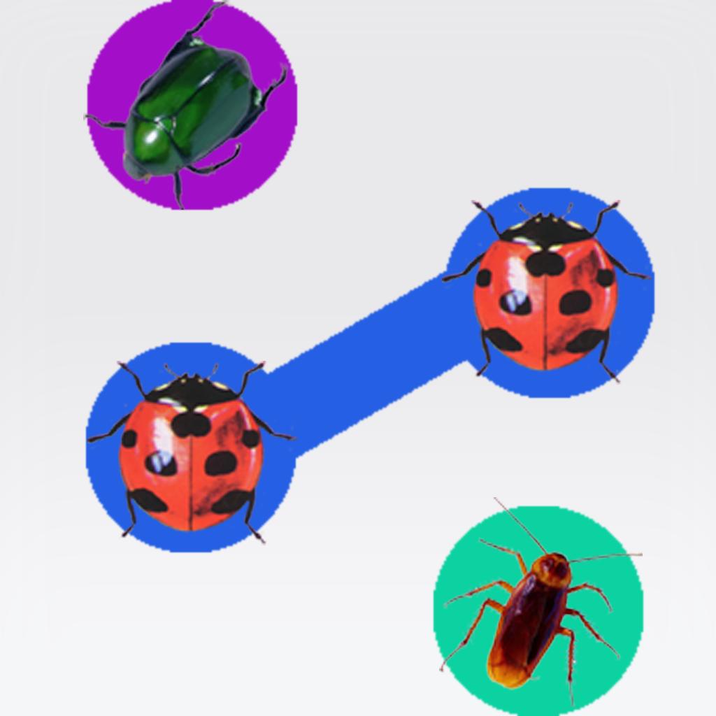 Bug-Link