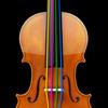 String Trio - 弦楽 3 重奏