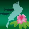 滋賀観光マップ