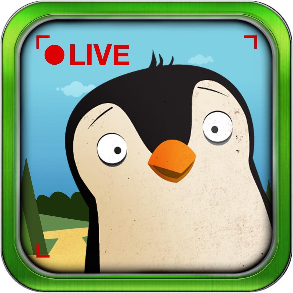 Pocket Zoo with Live Animal Cams