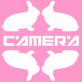 左右カメラ