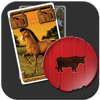 Hacienda HD Family Board Game by Wolfgang Kramer iPad