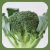 内田悟のやさい塾アプリ-冬の旬野菜3/ブロッコリー