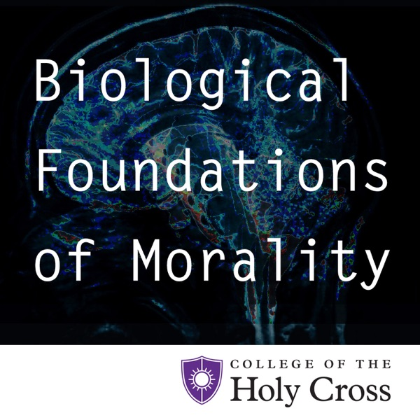 Biological Foundations of Morality: Neuroscience, Evolution and Morality