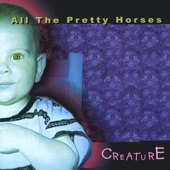 All the Pretty Horses - White Horses