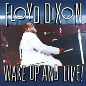 Floyd Dixon - My Song Is Don't Worry