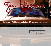 Gin Blossoms - Found Out About You