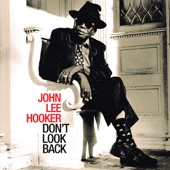 John Lee Hooker - Ain't No Big Thing