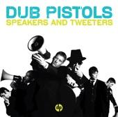 Speakers and Tweeters