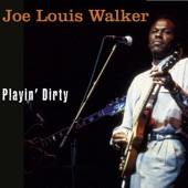 Joe Louis Walker - A Woman Needs To Be Loved