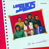 LOS BUKIS - TE VOY A  AMAR
