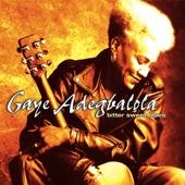 Gaye Adegbalola - You Really Got A Hold On Me