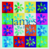 The Best of James - James