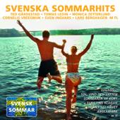 Svenska sommarhits