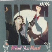 INXS - What You Need (45 Version)