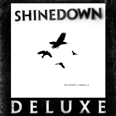 Second Chance - Shinedown song