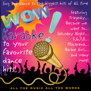We Like to Party (Karaoke Version) - Various Artists - Avid Entertainment - Various Artists - Avid Entertainment