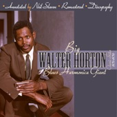 Walter Horton - Off The Wall