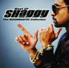 Angel (feat. Rayvon) [feat. Rayvon] - Shaggy