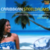 Caribbean Steeldrums - Pan Forever - London All Stars Steel Orchestra