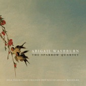 Abigail Washburn - His Eye Is On The Sparrow