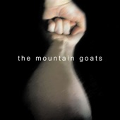 The Mountain Goats - This Year