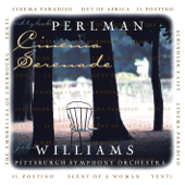 Theme from Schindler's List - John Williams, Itzhak Perlman &