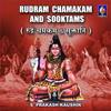 Rudram Chamakam And Sootams