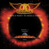 Aerosmith - I Don't Want to Miss a Thing artwork