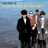 Echo & The Bunnymen - Nothing Lasts Forever artwork