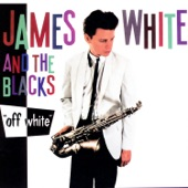 James White & The Blacks - Contort Yourself