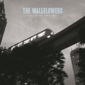 The Wallflowers - Sleepwalker