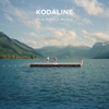 Kodaline - In a Perfect World artwork
