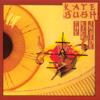 Kate Bush - Wuthering Heights Grafik
