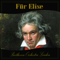 Für Elise - Beethoven Orchestra ...