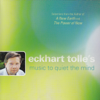 Eckhart Tolle's Music to Quiet the Mind - Various Artists