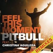 Pitbull - Feel This Moment