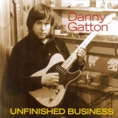 Danny Gatton - Homage to Charlie Christian