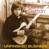 Danny Gatton - Lappin It Up