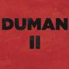 Duman - Duman II artwork