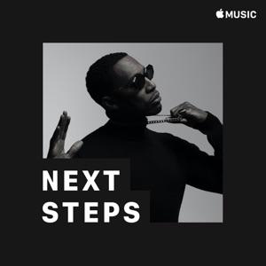 Raphael Saadiq: Next Steps