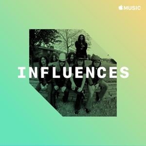 Lynyrd Skynyrd: Influences