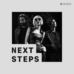 Yeah Yeah Yeahs: Next Steps